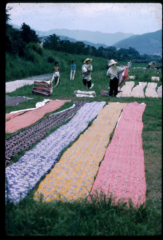 Women and boys stand in grassy field with long strips fabric stretched on the ground in the process of washing and drying in Japan, 1960.