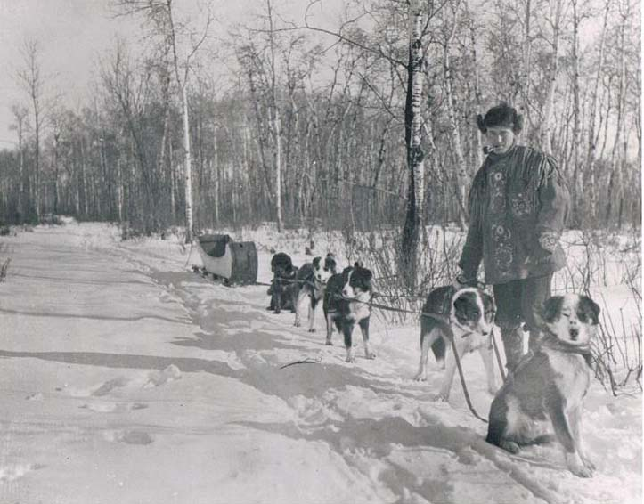 The artist H. Eric Bergman posing in a snowy forest with his dogsled team at Fisher Branch, Manitoba, 1917.