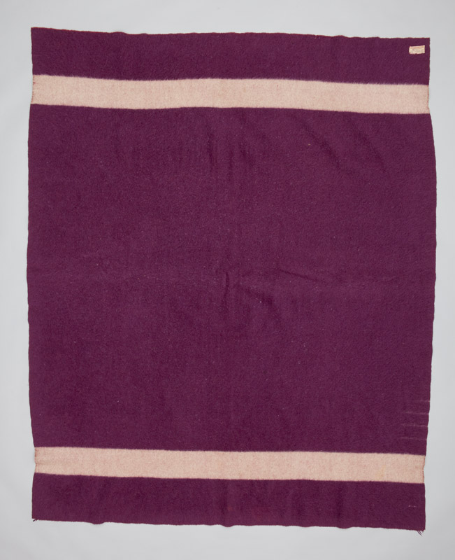 A dark purple rectangular woven wool blanket with a series of thin horizontal white stripes. Four small strips at one edge indicate the size.